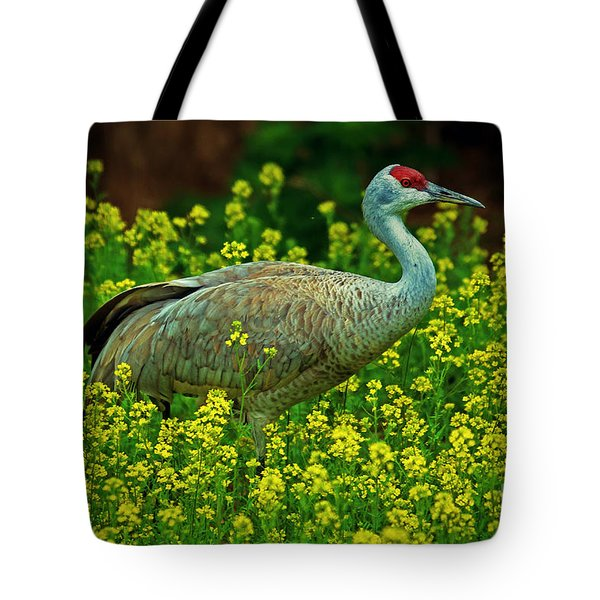 Sandhill Crane Tote Bag by Elizabeth Winter