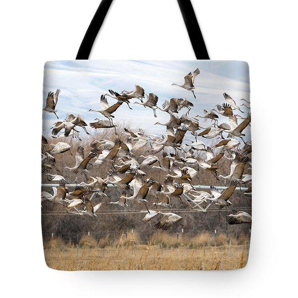 Sandhill Crane Explosion Tote Bag