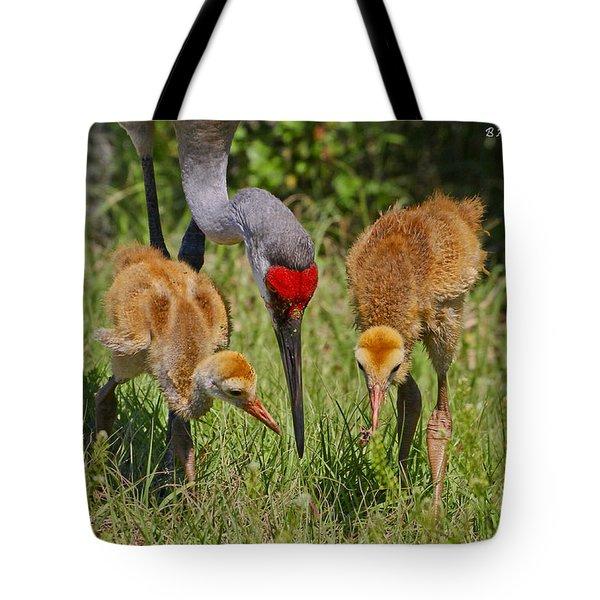 Sandhill Crane Family Feeding Tote Bag