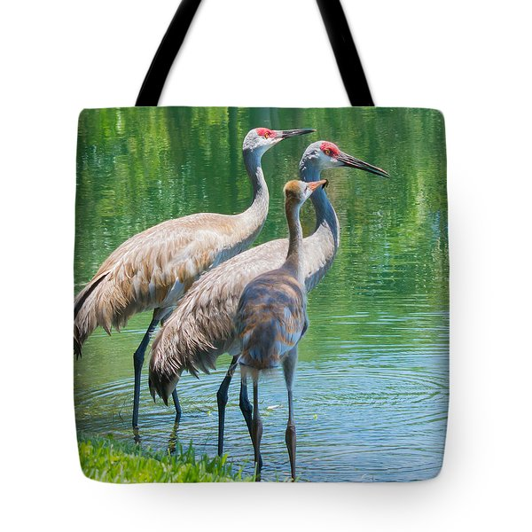 Mom Look What I Caught Tote Bag by Susan Molnar