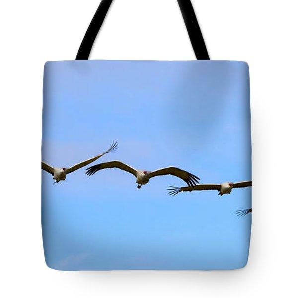 Sandhill Crane Flight Pattern Tote Bag by Mike Dawson