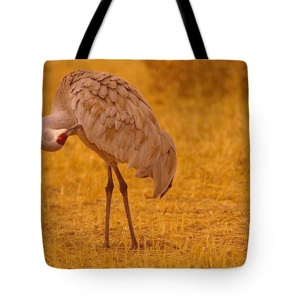 Sandhill Crane Preening Itself Tote Bag by Jeff Swan
