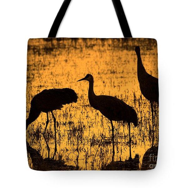 Sandhill Crane Silhouette Tote Bag