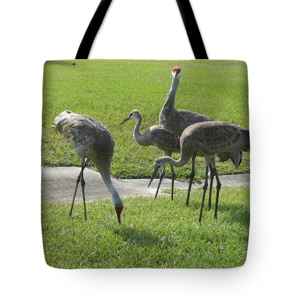Sandhill Cranes Family Tote Bag by Zina Stromberg