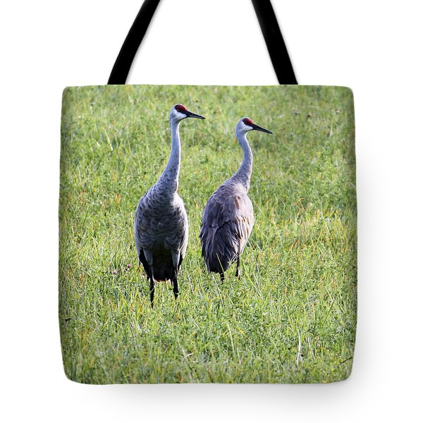 Tote Bag featuring the photograph Sandhill Cranes In Wisconsin by Debbie Hart
