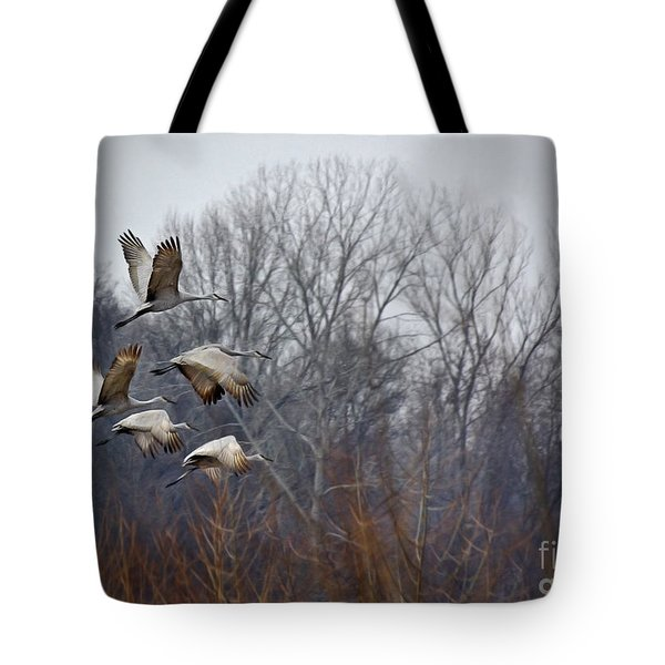 Sandhill Cranes Takeoff Tote Bag by Liz Masoner
