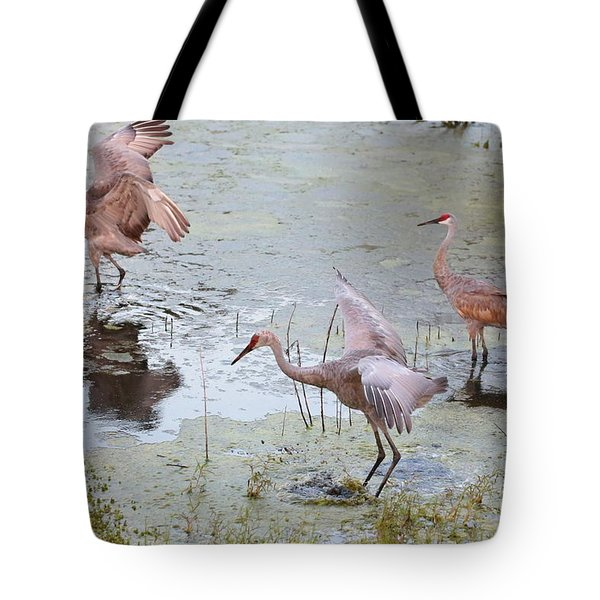 Sandhill Excursion Tote Bag