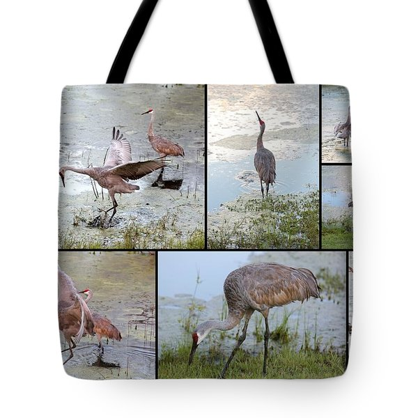 Sandhill Show Tote Bag by Carol Groenen