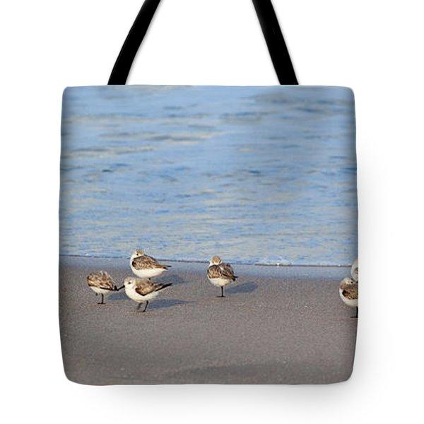 Sandpiper Siesta Tote Bag by Michelle Wiarda
