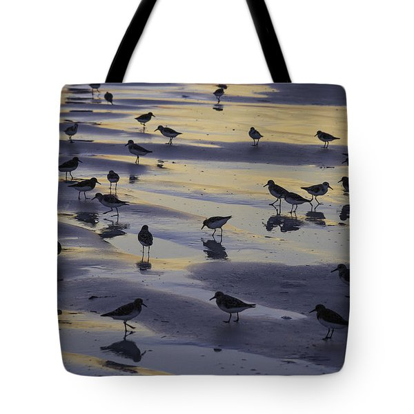 Sandpiper Sunset Convention Tote Bag