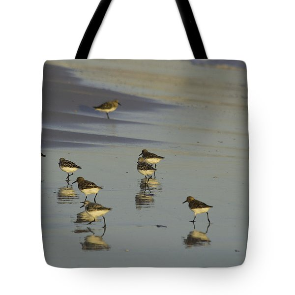 Sandpiper Sunset Reflection Tote Bag by Susan Molnar