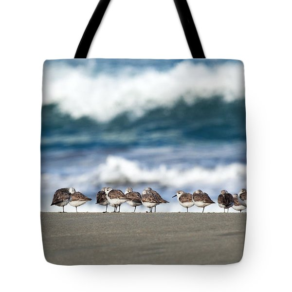 Sandpipers Keeping Warm On A Very Cold Day At The Beach Tote Bag