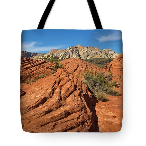 Sandstone Formations Snow Canyon Tote Bag