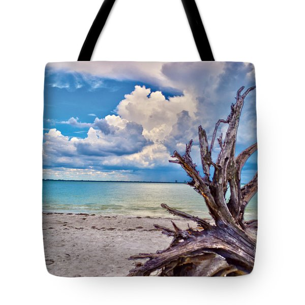 Sanibel Island Driftwood Tote Bag by Timothy Lowry