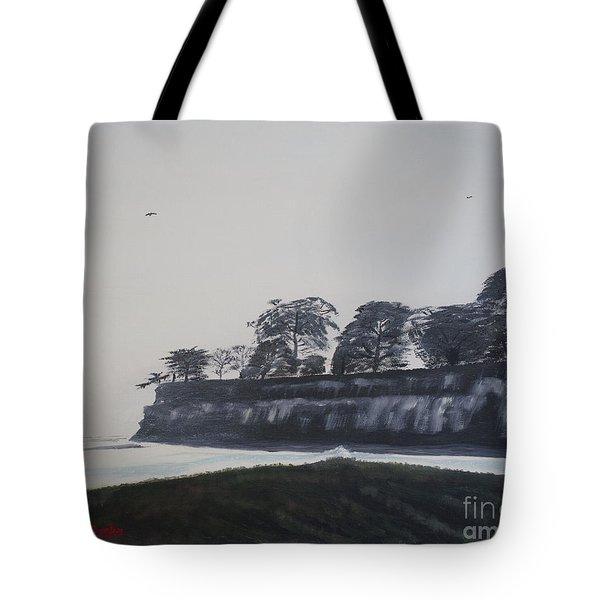 Tote Bag featuring the painting Santa Barbara Shoreline Park by Ian Donley