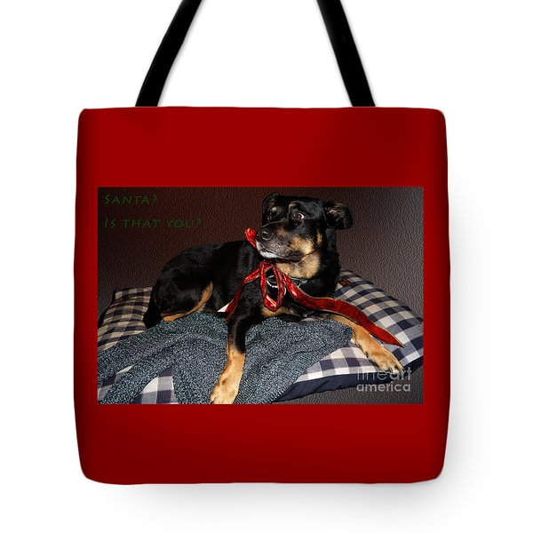 Tote Bag featuring the photograph Santa? by Cassandra Buckley