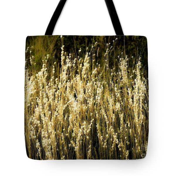 Santa Fe Grasses Tote Bag
