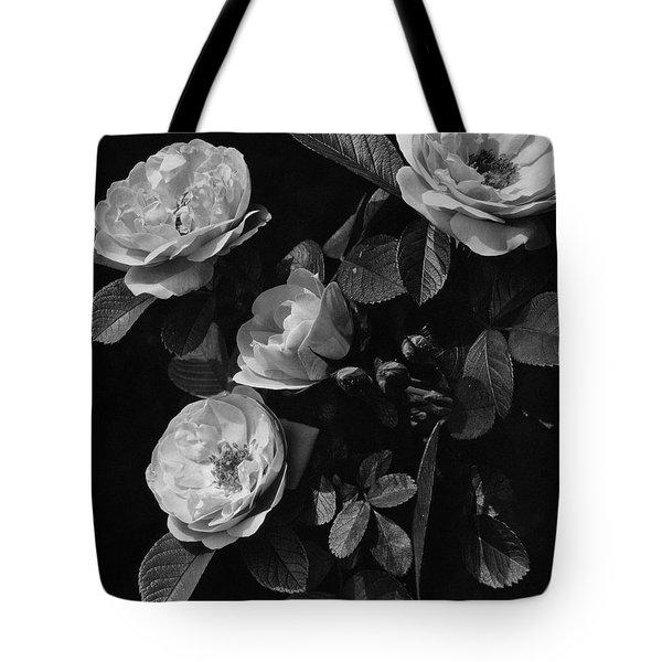 Sarah Van Fleet Variety Of Roses Tote Bag