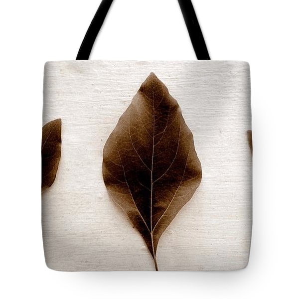 Sassafras Leaves In Sepia Tote Bag by Michelle Calkins