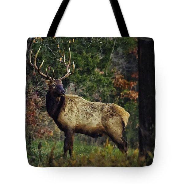 Satellite Bull Along Tree Line Tote Bag