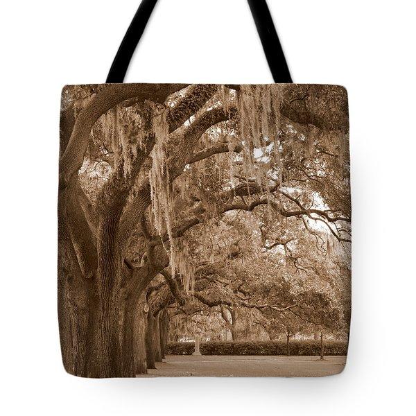 Savannah Sepia - Emmet Park Tote Bag by Carol Groenen