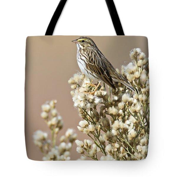 Tote Bag featuring the photograph Savannah Sparrow by Bryan Keil