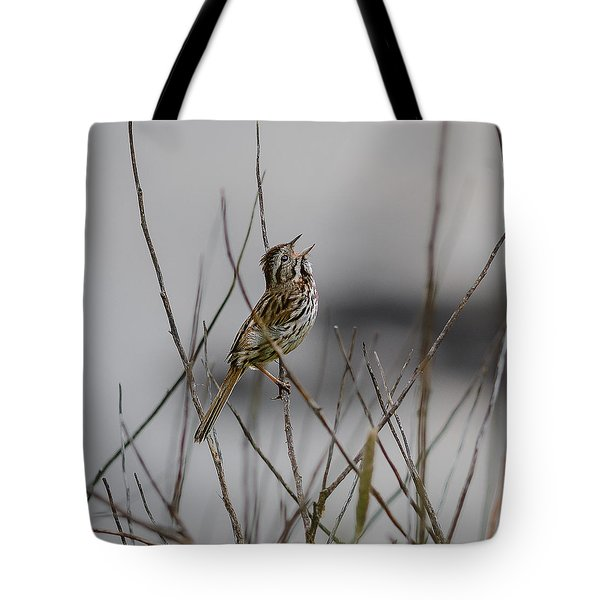 Savannah Sparrow Tote Bag