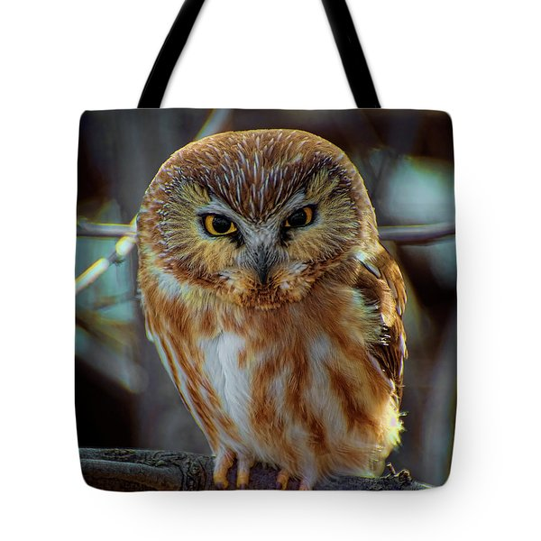 Tote Bag featuring the photograph Saw-whet Owl by Britt Runyon