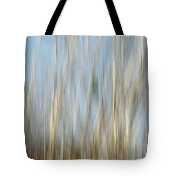 Sawgrass In Motion Tote Bag by Benanne Stiens