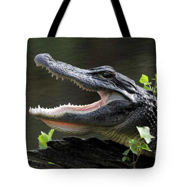 Say Aah - American Alligator Tote Bag