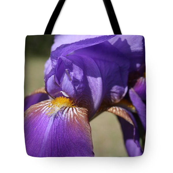 Say Ahhhh Tote Bag by Cathy Harper