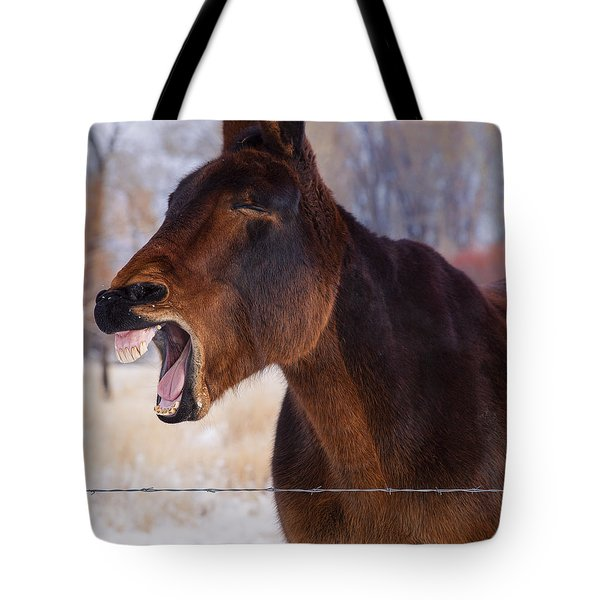 Say Ahhhh Tote Bag