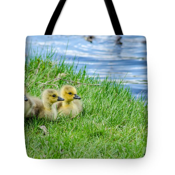 Staying Together Tote Bag