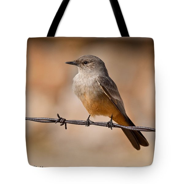 Say's Phoebe On A Barbed Wire Tote Bag