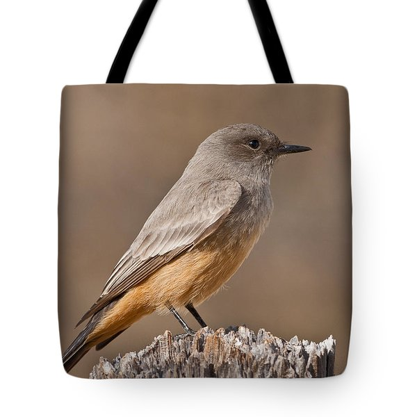 Say's Phoebe On A Fence Post Tote Bag