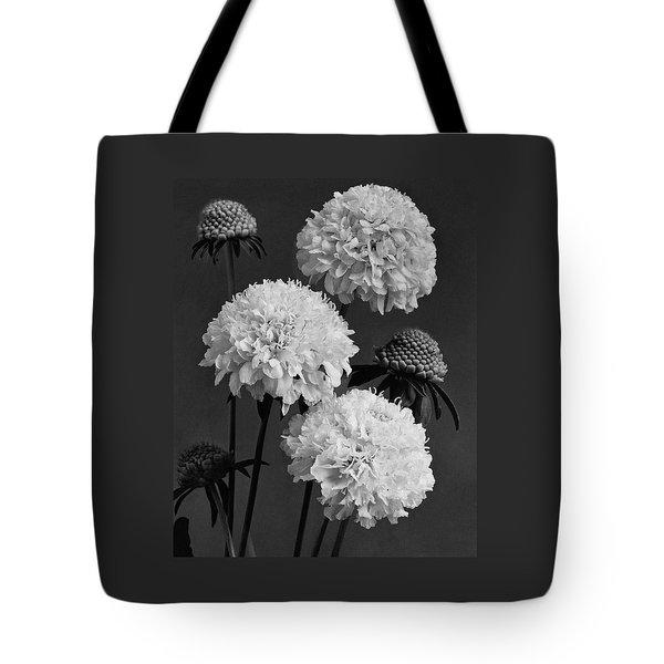 Scabiosa Peace Flowers Tote Bag