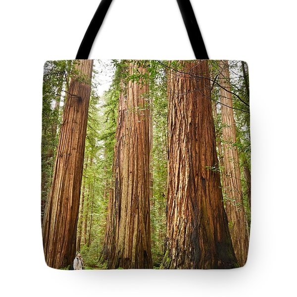 Scale - The Beautiful And Massive Giant Redwoods Sequoia Sempervirens In Redwood National Park. Tote Bag