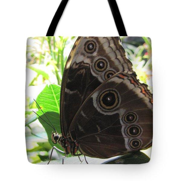 Scarce Morpho Tote Bag