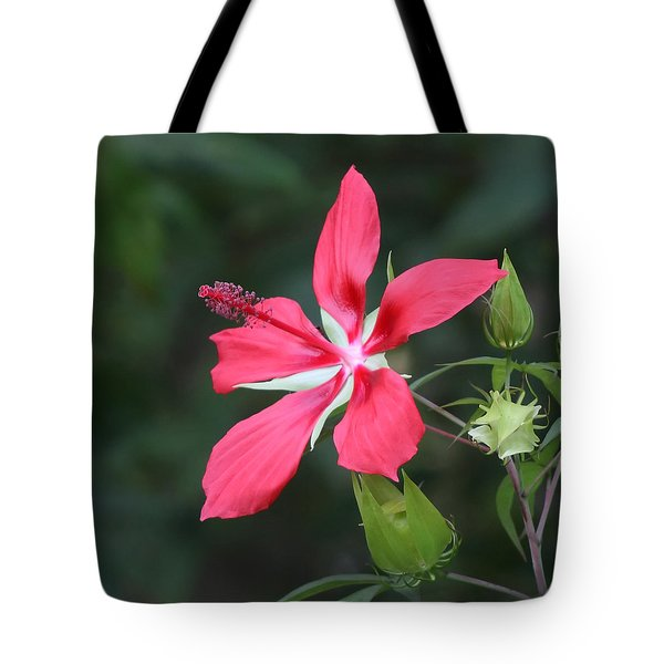 Tote Bag featuring the photograph Scarlet Hibiscus #3 by Paul Rebmann