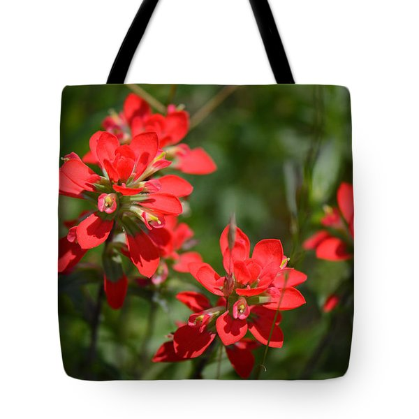 Scarlet Paintbrush. Texas Wildflowers. Castilleja_indivisa Tote Bag