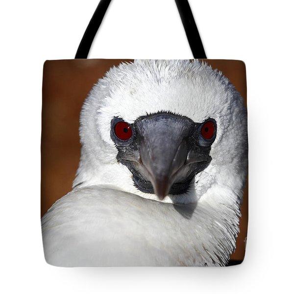 Scarlet Stare Tote Bag