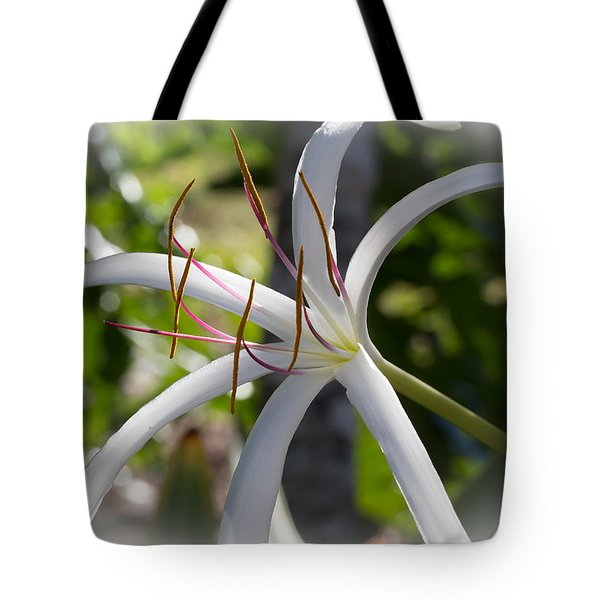 Spider Lilly Flower Tote Bag