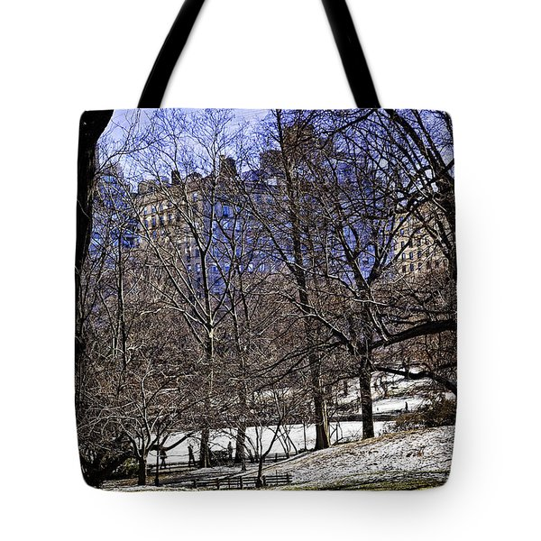 Scene From Central Park - Nyc Tote Bag by Madeline Ellis