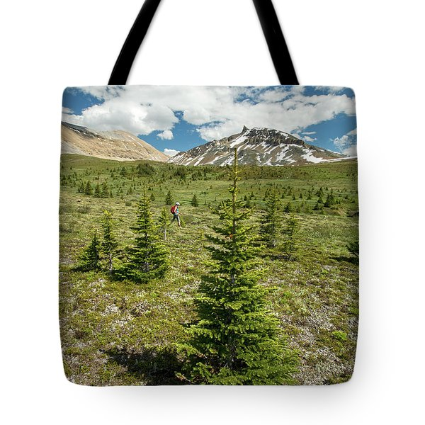 Scenes From Mosquito Mountain Tote Bag