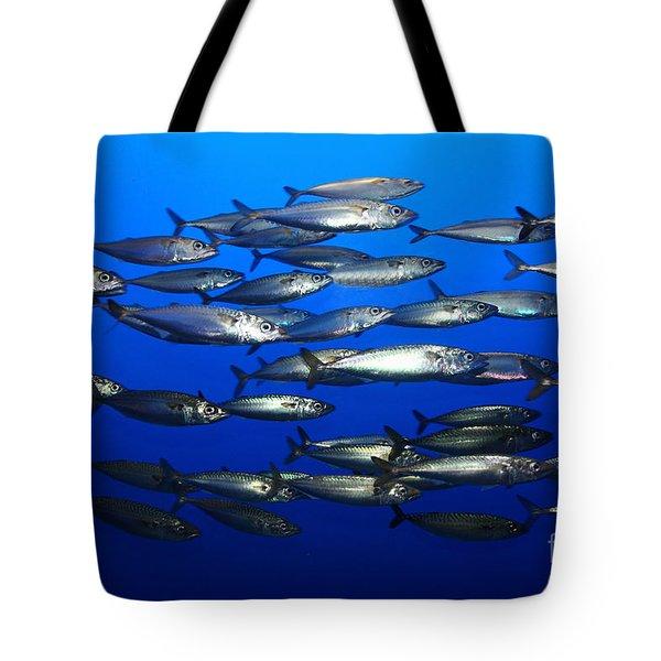 School Of Pacific Sardines 5d24927 Tote Bag