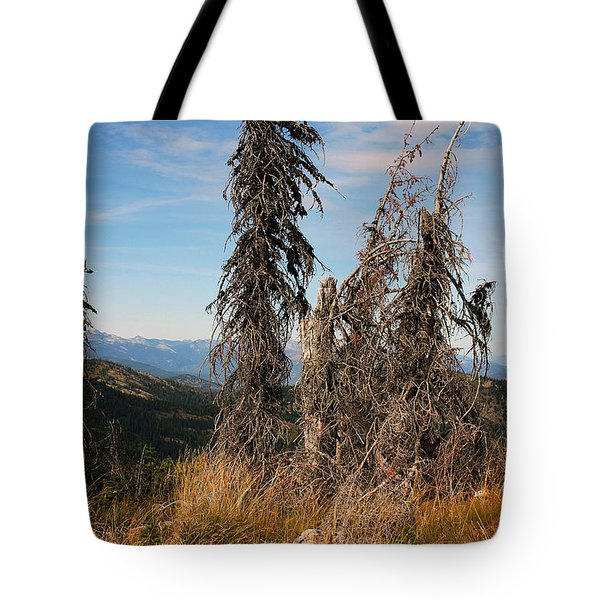 Tote Bag featuring the photograph Schweitzer Mountain 2 by Ellen Tully