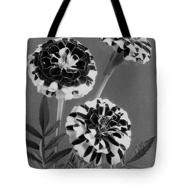 Scotch-stripe Marigolds Tote Bag