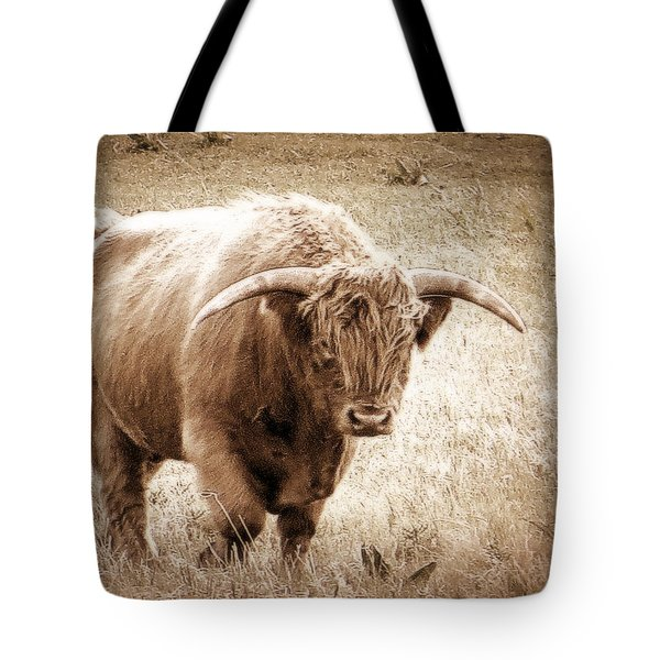 Scottish Highlander Bull Tote Bag by Karen Shackles