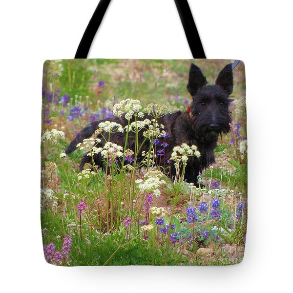 Tote Bag featuring the photograph Scottish Wildflower by Michele Penner