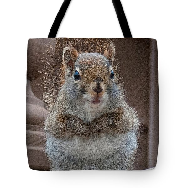 Scroodle Tote Bag